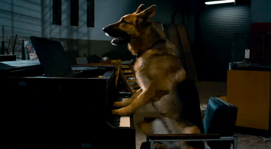 Cinema-Maniac: Cool Dog (2010) Review