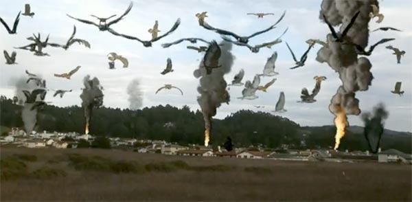 Cinema-Maniac: Birdemic: Shock And Terror (2008) Review